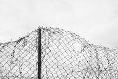 Deformed wire netting with holes. White overcast sky in the background as copy space area. Melacholic shot of old ruined barrier Stock Photo