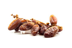 Deglet Nour or Kurma Stock Images