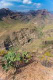 Degollada de las Yeguas Viewpoint - Gran Canaria Royalty Free Stock Photos