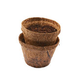 Degradable coconut pot isolated Stock Images