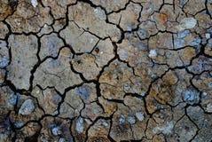 Degradación del suelo del calentamiento del planeta imagenes de archivo