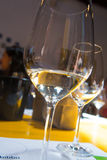 Degustação de vinhos, adega Donnafugata, Marsala, Sicília, Itlay, o 28 de maio Fotos de Stock Royalty Free