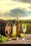 Degustação de vinhos com fundo do vinhedo Foto de Stock Royalty Free