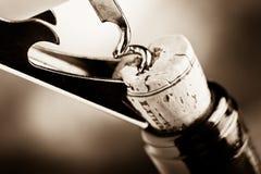Degustación de vinos Fotos de archivo libres de regalías