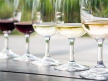 Degustación de vinos en Stellenbosch Fotos de archivo
