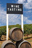 degustaci szyldowy wino Fotografia Stock