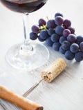Degustation de vin Image libre de droits