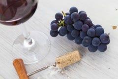 Degustation del vino Fotografia Stock Libera da Diritti