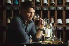 Degustation process of sommelier in wine cellar. Man holding glass with poured white alcoholic liquid sniffing fragrance of beverage to define quality, table stock photos