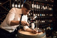 Degustator fêmea impressionante que verifica o vinho imagem de stock