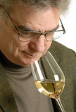 Degustatore del vino Immagini Stock
