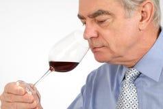 Degustatore del vino Fotografia Stock