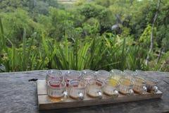 Degustazione dell'insieme dei generi differenti di tè e di caffè Fotografie Stock Libere da Diritti