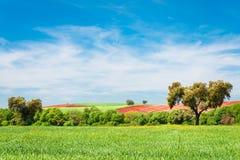 Dehesa Extremadura Obrazy Stock
