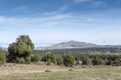 Dehesa in Guadarrama Mountains Royalty Free Stock Image