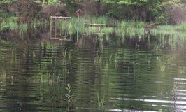 Dehors, arbres, inondation, l'eau, pompe à main photos libres de droits