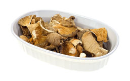 Dehydrated oyster mushrooms in a oval dish Royalty Free Stock Photography