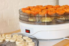 Dehydrator with fruit Royalty Free Stock Image