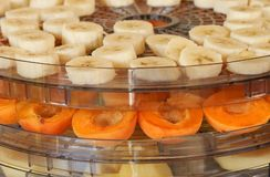 Dehydrator with fruit Royalty Free Stock Photography