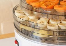 Dehydrator with fruit Stock Photography