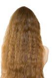 Dei capelli nudo posteriore lungamente Immagini Stock
