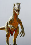 deinonychus恐龙 免版税库存图片