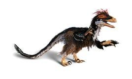 Deinonychus用羽毛装饰恐龙 库存照片