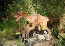 /130-120 Deinonychus-cretáceo hace millón de años En el Dinopa Imagen de archivo libre de regalías
