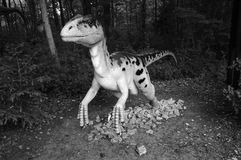 Deinonychus. Model of dinosaur in Jurassic park, Poland. Royalty Free Stock Photos