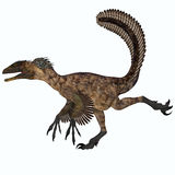 Deinonychus over White Stock Photography