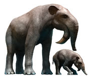 Deinotherium and calf Stock Images