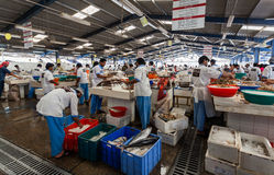 Deira,迪拜,阿拉伯联合酋长国5月17,2014 -渔夫卖鲜鱼在 图库摄影
