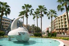 Deira Fish Round about Royalty Free Stock Photo