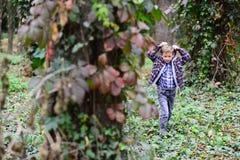 Deixa apenas para ir andar Rapaz pequeno que anda ao redor nas madeiras Rapaz pequeno que anda no selvagem Apreciando o cenário e imagem de stock