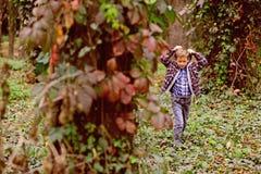 Deixa apenas para ir andar Rapaz pequeno que anda ao redor nas madeiras Rapaz pequeno que anda no selvagem Apreciando o cenário e foto de stock