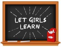Deixe meninas aprender! Eduque o quadro ilustração royalty free