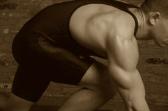 Deixe-nos wrestle Fotografia de Stock