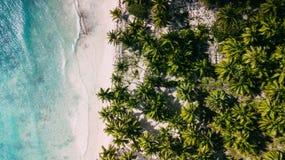 Deixou o oceano e as palmas direitas Praia média fotos de stock royalty free