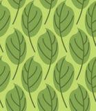 Deja el modelo inconsútil Fondo del vector de plantas verdes Fotografía de archivo libre de regalías