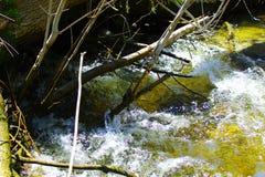 Dejado todo fluir como el agua Fotos de archivo