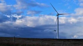 Deje el viento soplar Foto de archivo
