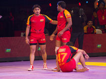 Dejected Bengaluru Bulls Royalty Free Stock Photos