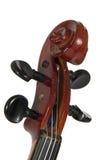 Deka Violine getrennt auf einem weißen Hintergrund Stockfoto