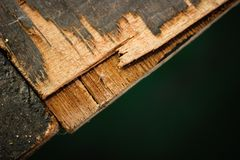 Dekadent träetappgolv royaltyfria foton