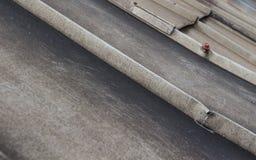 Dekking van het dak de vuile aluminium met schroevendetail Stock Fotografie