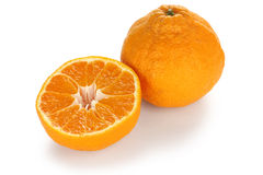 Dekopon , japanese high quality citrus fruit Stock Images