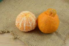 Dekopon mandarynki pomarańcze Obraz Royalty Free