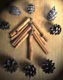 Dekor för ` s för nytt år av kanelbruna pinnar arkivfoto