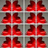 Dekor mit roter Amaryllis-Blume Stockbild