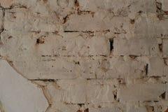 Dekor und Designraumdachbodenartbacksteinmauer Lizenzfreie Stockbilder